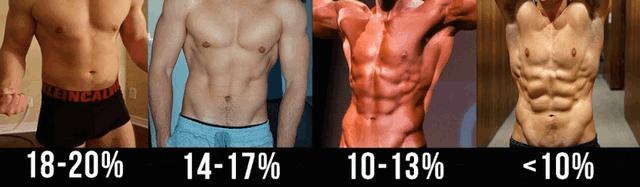 体脂肪率別の腹筋の見え方