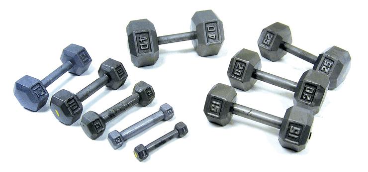 固定式ダンベル(Fixed-weight Dumbells)の画像