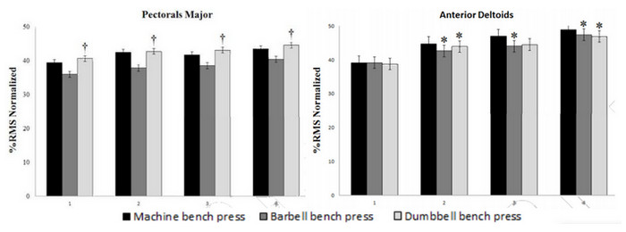 ダンベル・バーベルのベンチプレス挙上重量について